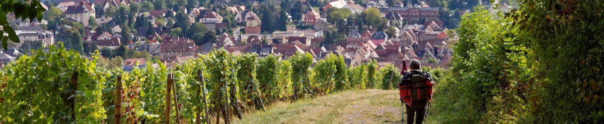 GR53x – Traversée des Vosges – 3ème partie