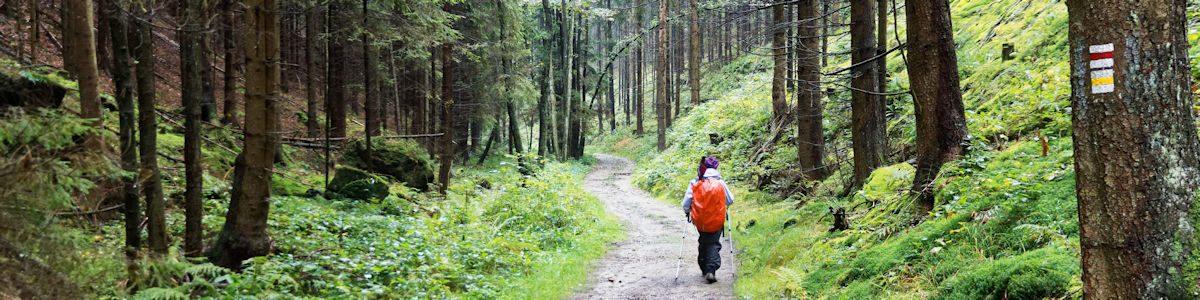Suisse saxonne – 1ère partie